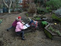 Ivy, Libby and Cassius busydrawingthe plants they found.