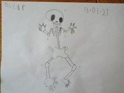 Oscar skeleton drawing.jpg