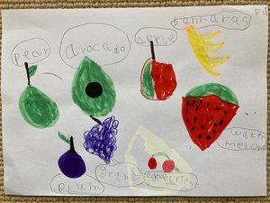 Eli's fruit work