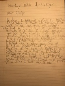 Edie's diary