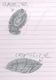 JWB fossils.png