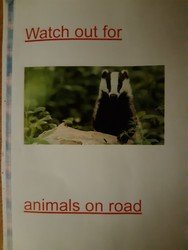 Oscar's road safety poster