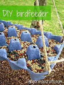 bird feeder 1.jpg