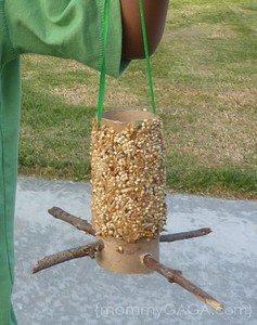 bird feeder 2.jpg
