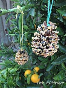 bird feeder 7.jpg