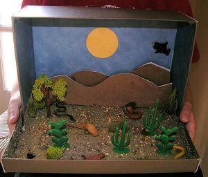 desert box.jpg