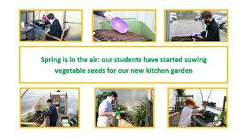 Sowing seeds for the school garden
