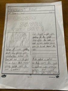 Anastasia's newspaper report