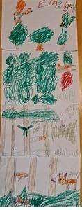 Janella's rainforest