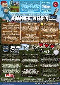 Minecraft Parent Advice..jpg