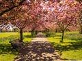 spring 2.jpg