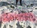 bertie snow.jpg