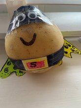 Izah & Zariah made potatoes into superheros!