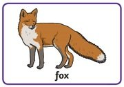 Animal Rhymes - fox.jpg