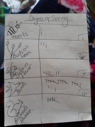 Oscar's tally chart