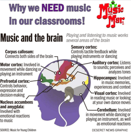 Music and the Brain.png