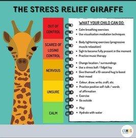 Stress Relief Giraffe.jpg