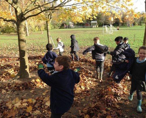 woodland learning 1.jpg