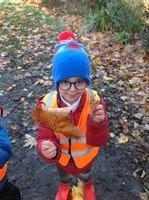 leaf sizes yagmur.jpg
