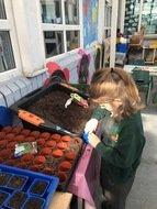 Planting Sylvia.jpg