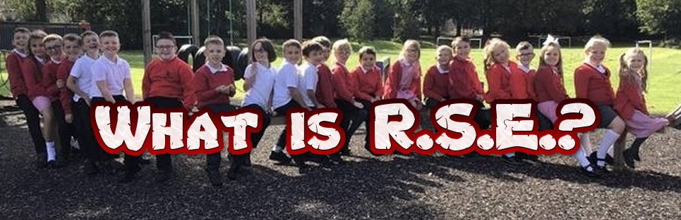 What is RSE