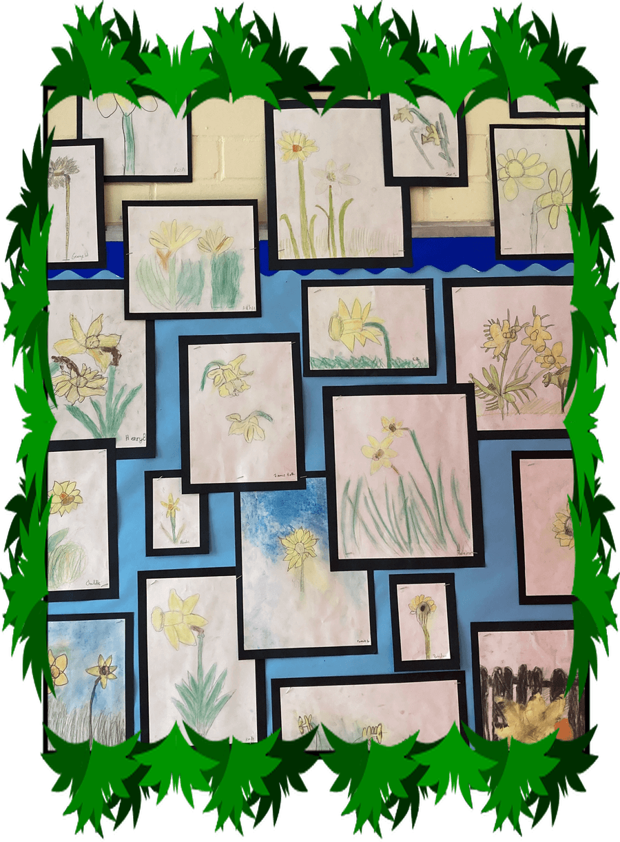 We made the most of the sunshine and did our drawings of daffodils.