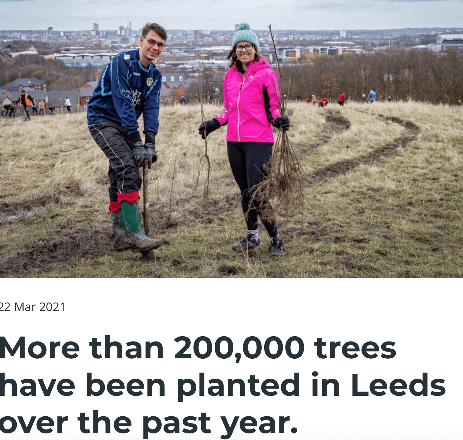 trees Leeds