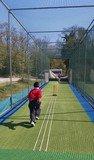 Cricket 4.jpg