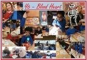 Y6 Blood Heart.JPG