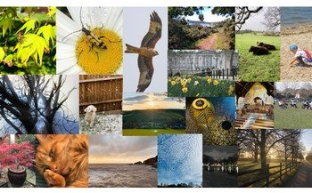 Staff & Student photo comp entries
