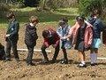 planting (11).JPG