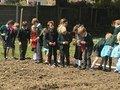 planting (17).JPG