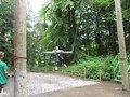 swing (20).JPG