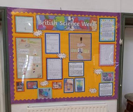 Science week board.jpg