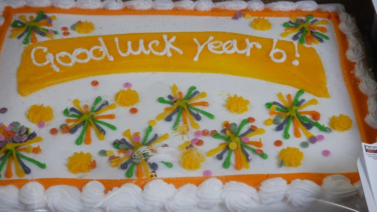 Year 6 Cake.JPG