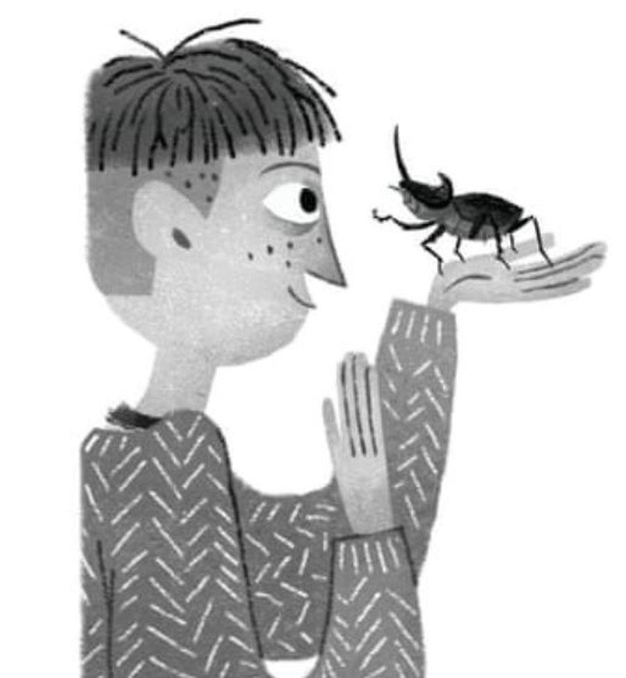 Beetles - Year 4