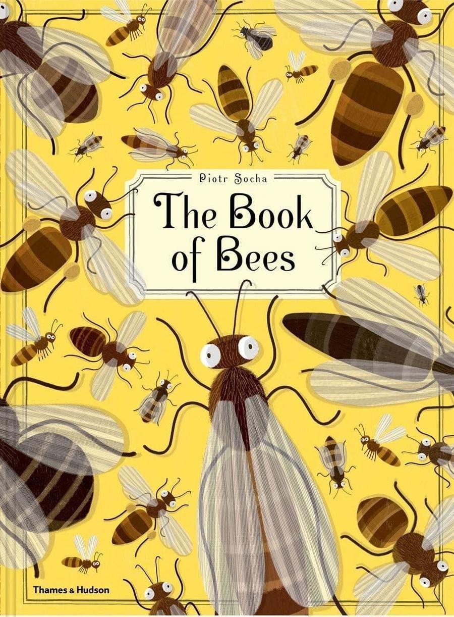 Bees - Year 2