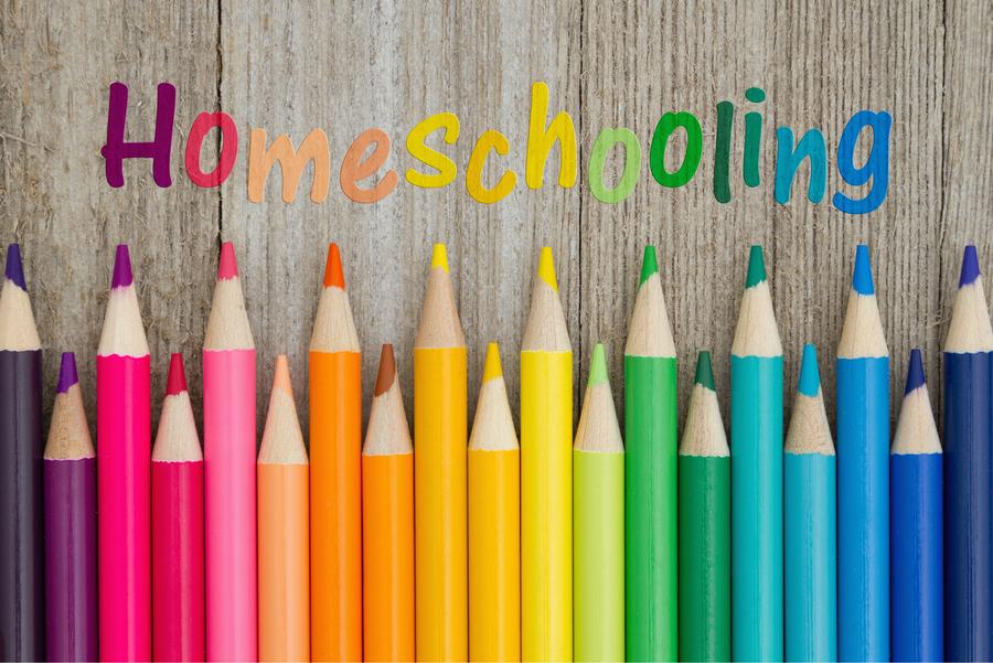 HOME SCHOOLING HUB