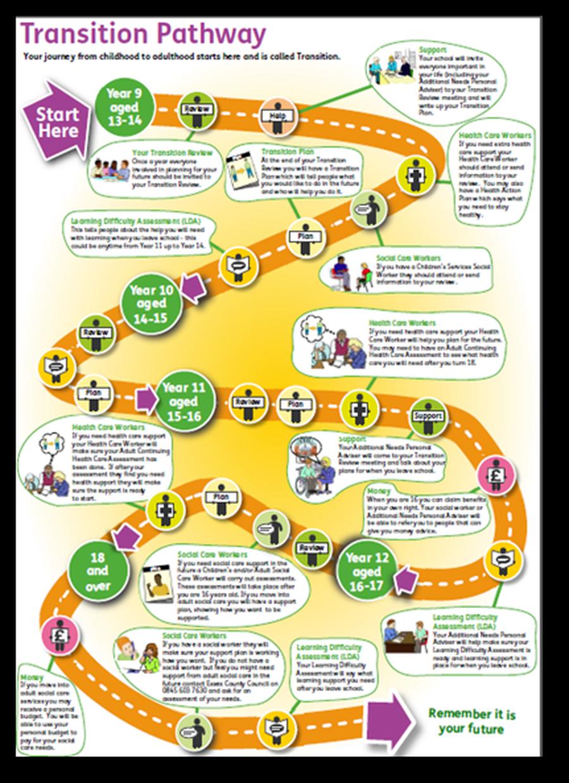 Transition Pathway Chart