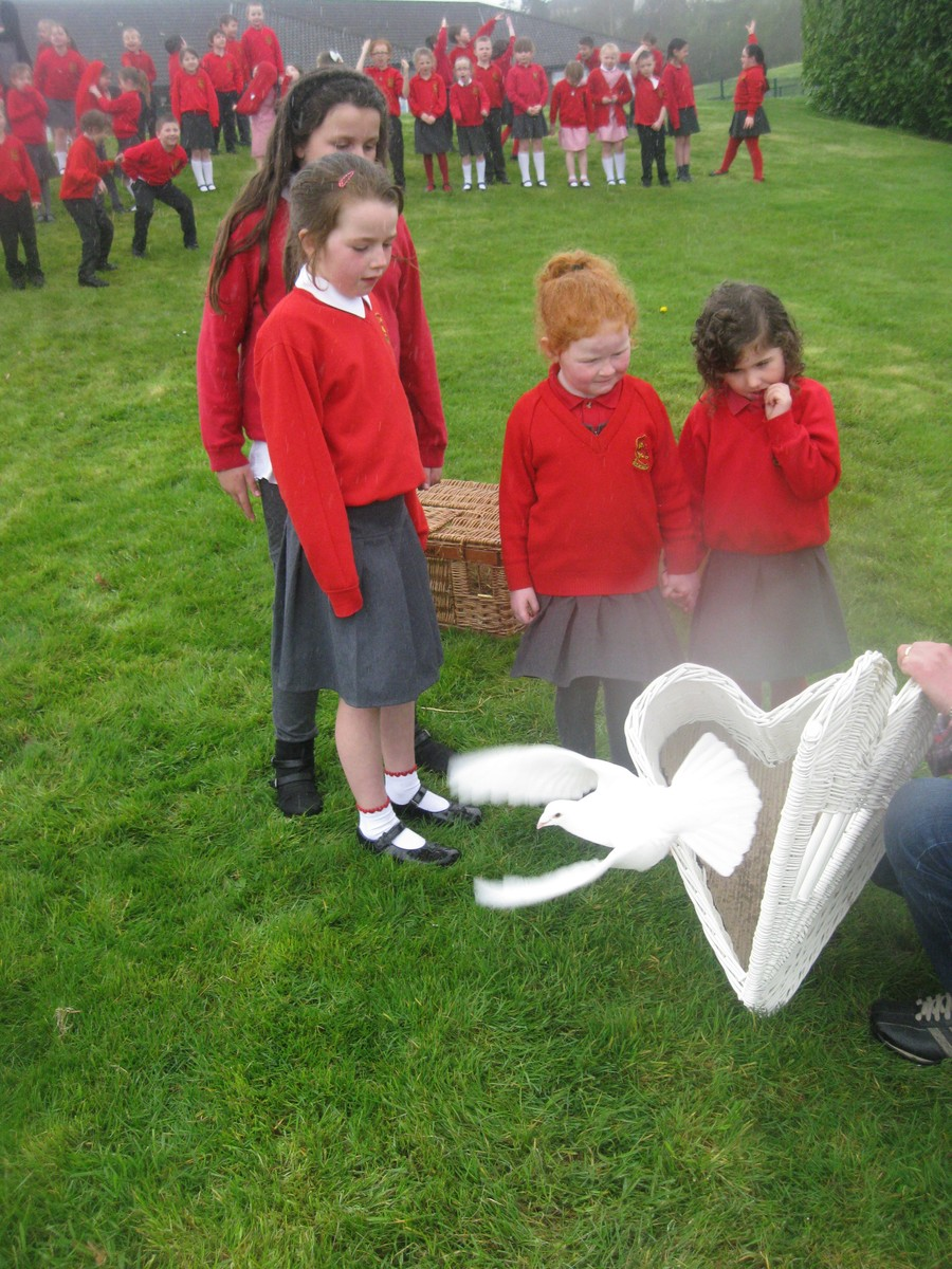 P2 and P3 pupils assisted by Flynn, P7 ECO Warrior, release one of Joe's pigeons.
