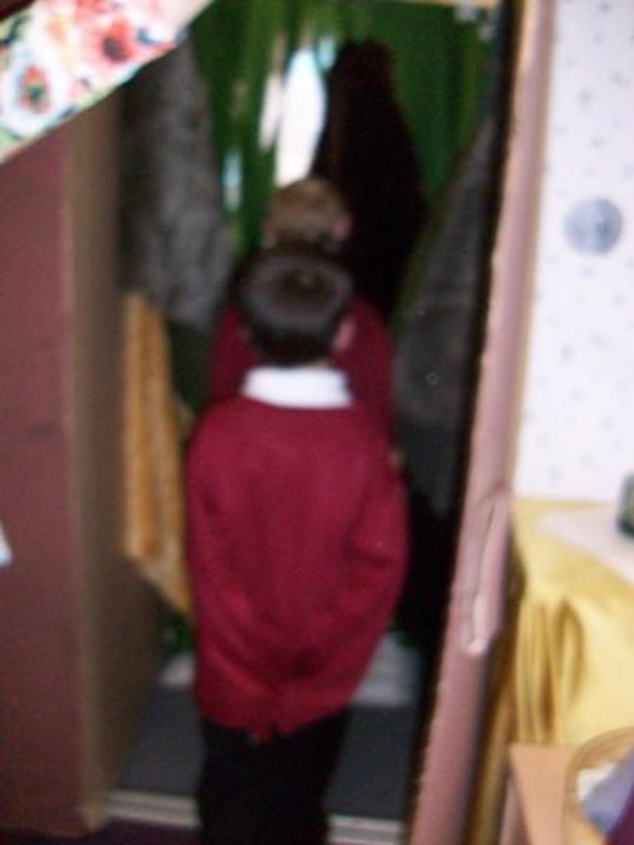 Going through the wardrobe