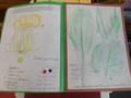 homework 001.JPG