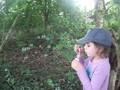 2014 Woodland Explorers (7).jpg