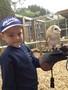 24 06 2014 - KS1 to Huby Birds of Prey (29).jpeg