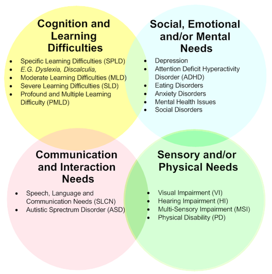 relationship between disability and special educational needs