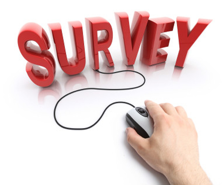 KS2 (e)Safeguarding Pupil Survey