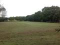 School Field.JPG