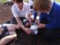 Science investigation testing materials 2.JPG