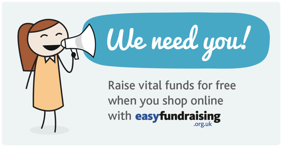 Easy Fundraising website