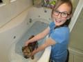 Mirran washing her little puppy Tessa
